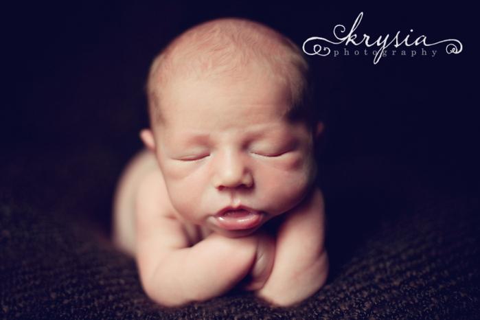 Krysia Photography   2010 Copyright